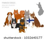 dogs by country of origin.... | Shutterstock .eps vector #1032640177
