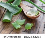 fresh aloe leaves and aloe gel... | Shutterstock . vector #1032653287