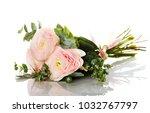 bunch of pale pink ranunculus ...   Shutterstock . vector #1032767797