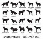 vector set of different breeds... | Shutterstock .eps vector #1032964153