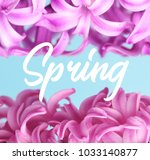 hyacinth pink surprise and... | Shutterstock . vector #1033140877