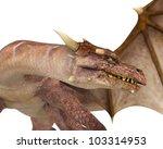 Long Neck Dragon Close Up