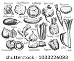 illustration of vegetables with ... | Shutterstock . vector #1033226083