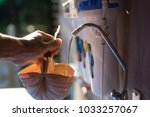 filter system and cup made of... | Shutterstock . vector #1033257067