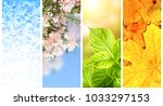 Four Seasons Of Year. Set Of...