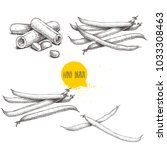 french green beans pods set.... | Shutterstock .eps vector #1033308463