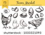 vector set with hand drawn raw...   Shutterstock .eps vector #1033321093