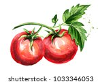 red tomatoes composition.... | Shutterstock . vector #1033346053