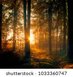 magic sunlight comes in to  the ... | Shutterstock . vector #1033360747