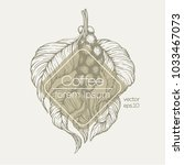 coffee beans vector...   Shutterstock .eps vector #1033467073
