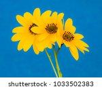yellow flowers on a blue... | Shutterstock . vector #1033502383