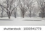 beautiful  cold  white  snow... | Shutterstock . vector #1033541773