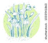 snowdrops  vector illustration. | Shutterstock .eps vector #1033541863