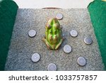 toad in the hole game seen from ... | Shutterstock . vector #1033757857
