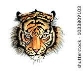 tiger head print fluffy... | Shutterstock . vector #1033809103