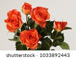 red roses flower bouquet on... | Shutterstock . vector #1033892443