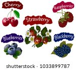 a set of different berries on a ... | Shutterstock . vector #1033899787