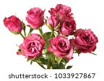 red roses flower bouquet on... | Shutterstock . vector #1033927867