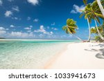 tropical scenery view on blue... | Shutterstock . vector #1033941673
