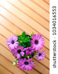 beautiful purple daisies with... | Shutterstock . vector #1034016553