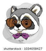 a raccoon in glasses. hipster... | Shutterstock .eps vector #1034058427