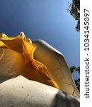 buddha and wind   Shutterstock . vector #1034145097