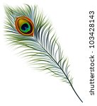 vector isolated peacock feather.... | Shutterstock .eps vector #103428143