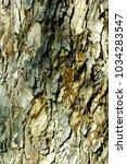 Small photo of Rain tree bark Disintegration time Battered wireless humidity