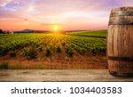 ripe wine grapes on vines in...   Shutterstock . vector #1034403583