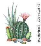 watercolor collection of cacti... | Shutterstock . vector #1034413543