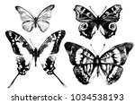 black butterfly watercolor ...   Shutterstock . vector #1034538193