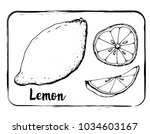 black and white fruit sketch... | Shutterstock .eps vector #1034603167