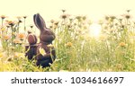 easter chocole rabbit in a... | Shutterstock . vector #1034616697