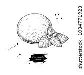 mozzarella cheese drawing. hand ... | Shutterstock . vector #1034771923