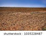edaphology. ground  lea  in... | Shutterstock . vector #1035228487