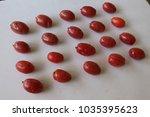 ripe elaeagnus latifolia fruits ...   Shutterstock . vector #1035395623