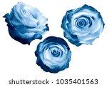 set  light blue roses on a... | Shutterstock . vector #1035401563