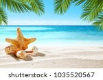 shell on beach and summer time  | Shutterstock . vector #1035520567