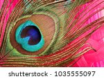 carnival peacock feathers.  | Shutterstock . vector #1035555097
