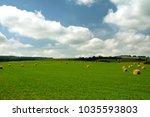 hay bales in the field | Shutterstock . vector #1035593803