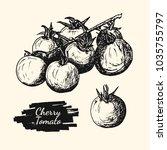 drawing illustration of cherry... | Shutterstock .eps vector #1035755797