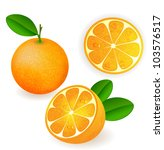 fresh orange fruits with leaves | Shutterstock .eps vector #103576517