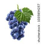 big bunch of blue grapes... | Shutterstock . vector #1035854257