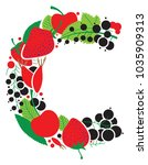letter c made from fruit and...   Shutterstock .eps vector #1035909313