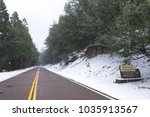 wide angle snow falling on pine ... | Shutterstock . vector #1035913567