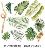 hand drawn watercolor... | Shutterstock . vector #1035991597