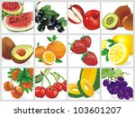 fresh berries on white... | Shutterstock .eps vector #103601207