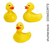 rubber toy duck isolated on... | Shutterstock . vector #1036023973