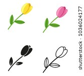 vector set of different tulip... | Shutterstock .eps vector #1036024177