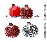 pomegranate  sketch for your... | Shutterstock .eps vector #1036070737